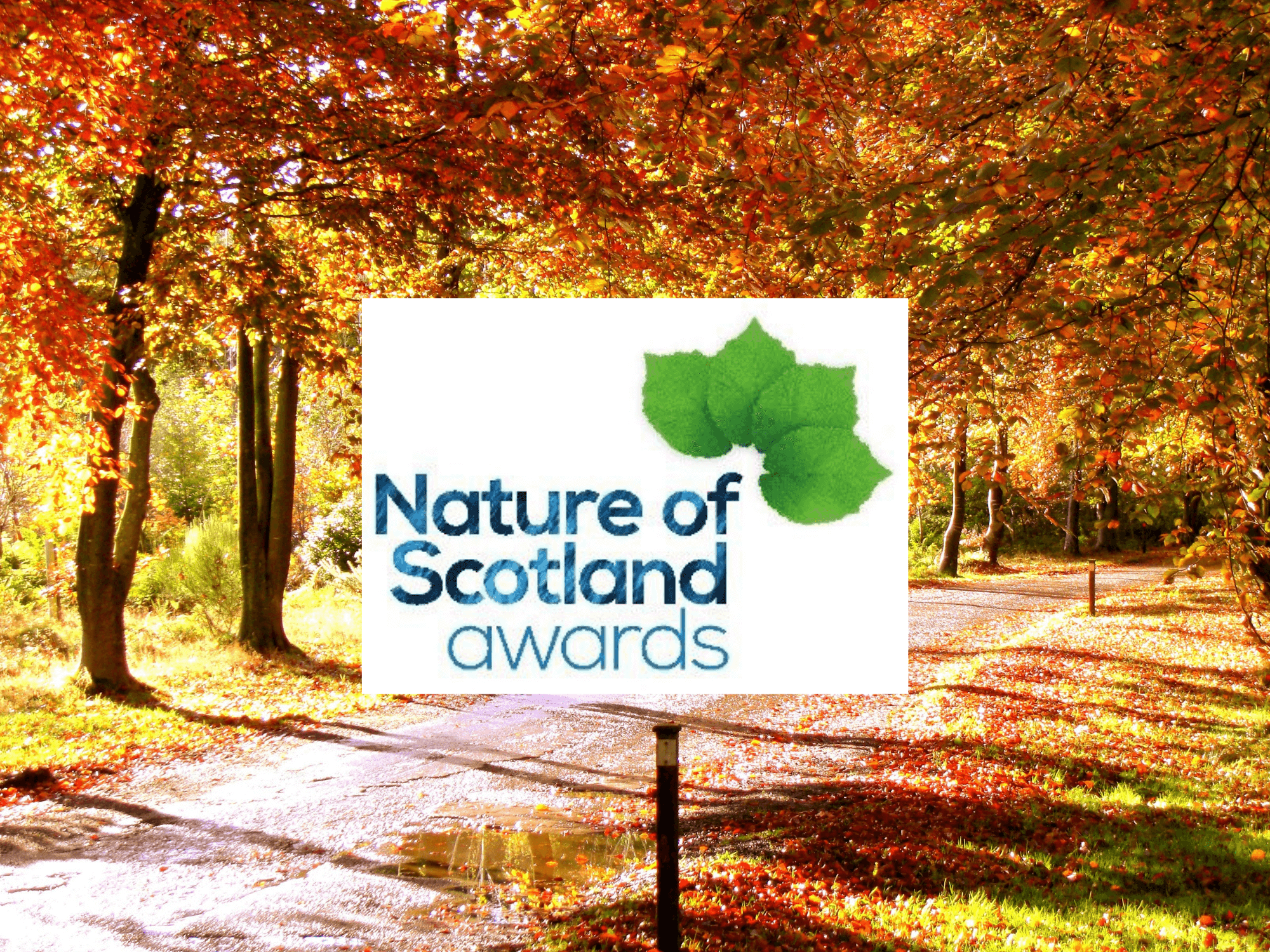 Rossie Nature of Scotland Awards