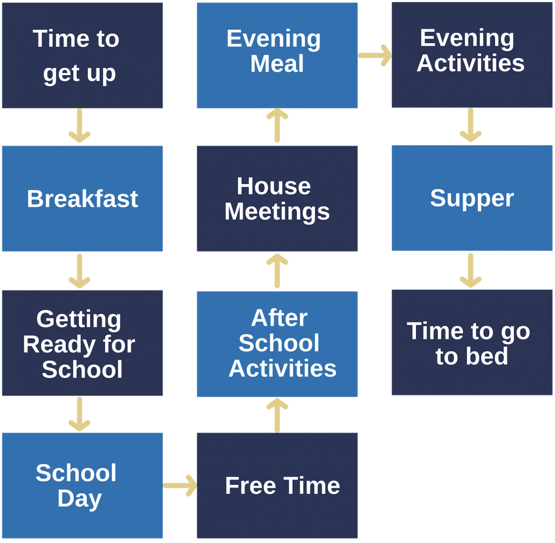 Structure of the day Journey for Young People Rossie diagram