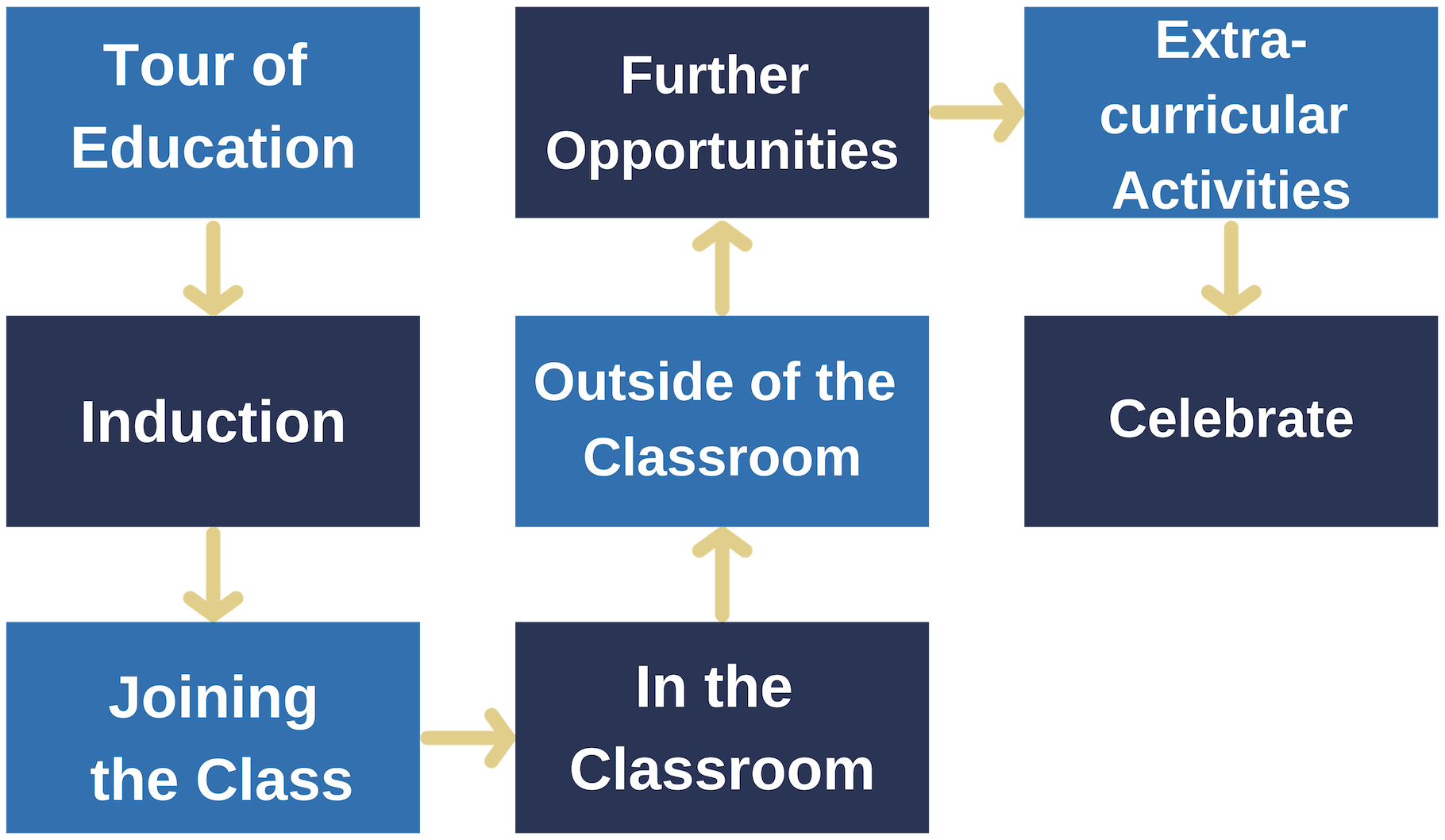 Education Journey for Young People Rossie diagram