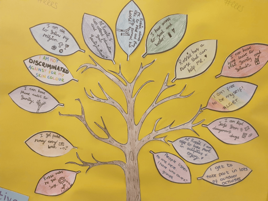Rossie's young person tree with each child writing on a leave explaining how they feel supported at Rossie